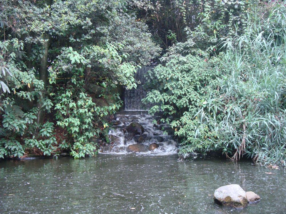 Jardin botanique jose celestino mutis carnet de voyages for Camping le jardin botanique